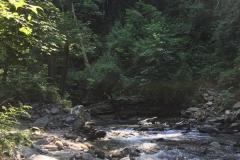 Torrente Lesa-vivilanotizia (3)