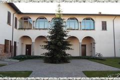 Palazzo-Taverna-6