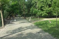 Parco Castello Vivilanotizia (19)