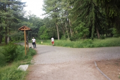 Parco Castello Vivilanotizia (4)