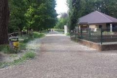Parco Castello Vivilanotizia (25)