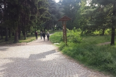 Parco Castello Vivilanotizia (32)