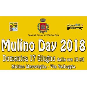 Mulino-Day-2018-vivilanotizia-1