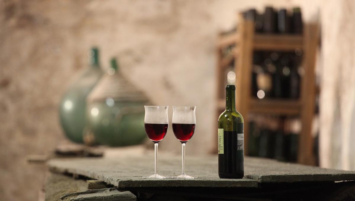 Vini in Villa-Villa Arconati-Bollate-vivilanotizia