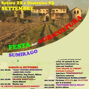 Sumirago-in-festa-vivilanotizia-1