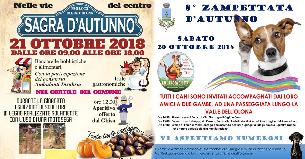 Sagra-autunno-Olgiate-Olona-vivilanotizia- 2
