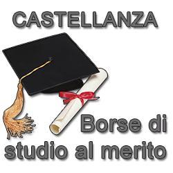 borsa-di-studio-al-merito-vivilanotizia 1