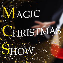 Magic Christmas Show-Vivilanotizia 1