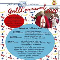 carnevale 2020-gallarate 1-vivilanotizia