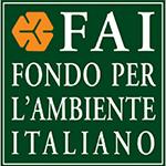FAI 1-Vivilanotizia