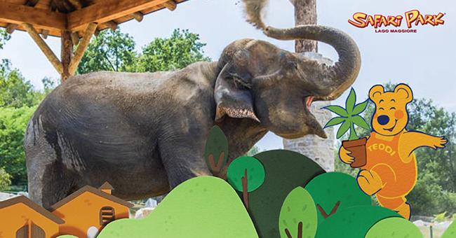 Safari Park-Vivilanotizia