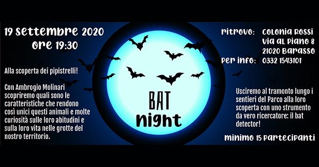 Bat Night-vivilanotizia