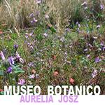 Museo botanico 1-vivilanotizia